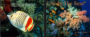 Buy Life In The Seas Book!