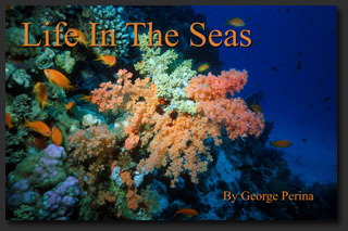 Buy the Life In The Seas book