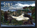 Seals Calendar for Kindle Fire